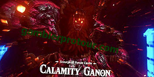 Дыхание дикого игрока безумно быстро побеждает Ганона