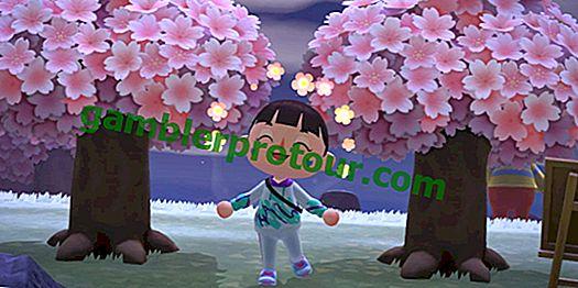 Comment obtenir des pétales de fleurs de cerisier dans Animal Crossing: New Horizons